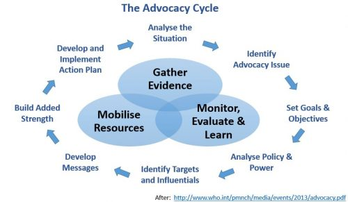 policy analysis and influence strategy